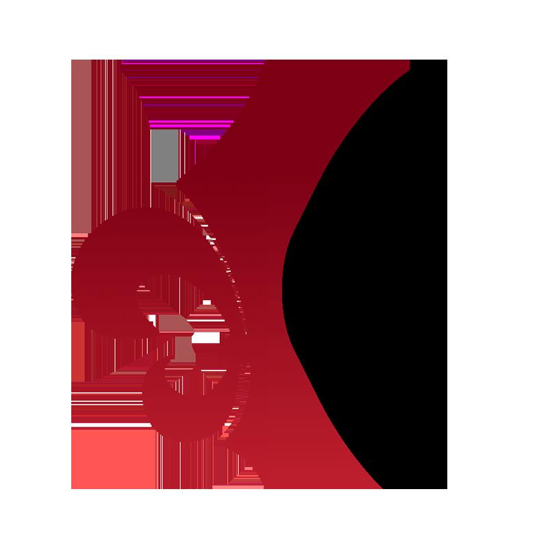 CASAPITTI logo